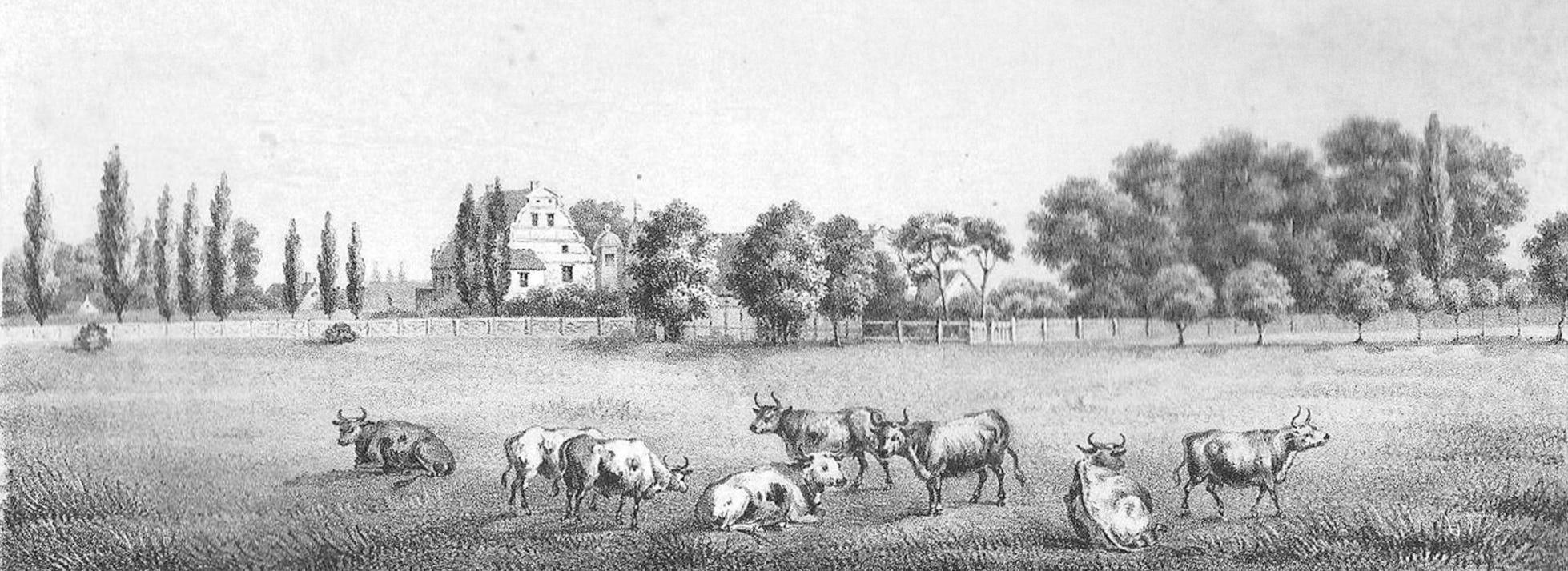 Gutshof Pansevitz – Kupferstich aus dem 19. Jh.
